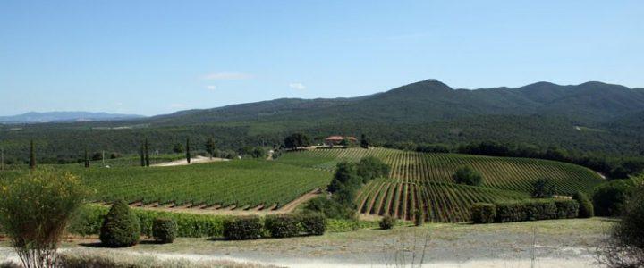 Agriturismo Eucaliptus - Camping in Toscane, Pisa, Volterra, Bolgheri en San Gimignano - www.LuxeTentHuren.nl